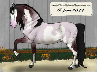 Import # 022 by LeviosHorseImports