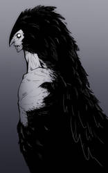 The Raven by TinyTale
