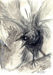 Raven by Abz-J-Harding