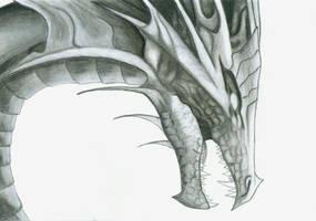 Dragon Head by silverdragon686