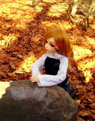 Autumn doll by charsi