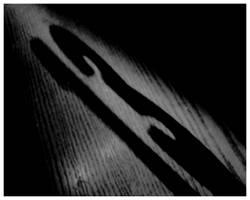 Triskaidekaphobia by Moonbeam13