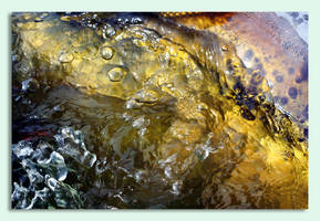 Feel Flows by Vividlight