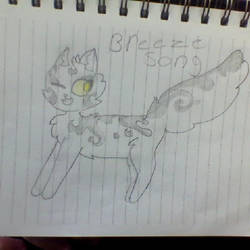 Warrior cat oc Breeze song! by Maplefeather105