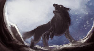Lobo2 by Fernando9121988