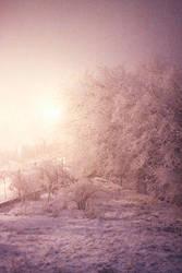 lovely winter by paulinpaulin
