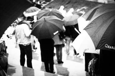 umbrella by paulinpaulin