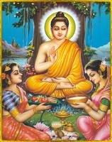BUDDHA by AvatarBuddha