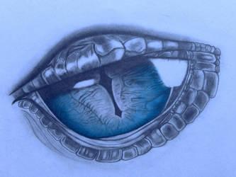 Dragon Eye by Rani0005