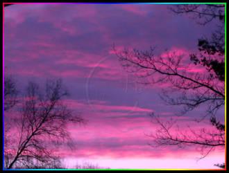 Winter Skies by zerodeficit
