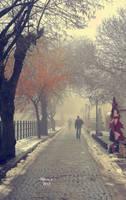 A Foggy day by panosozi