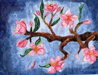Blossoms by redstarrose