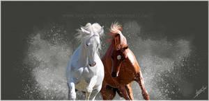 Gallop by HocusPlotus