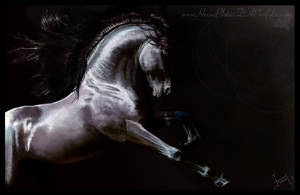 Out Of Dark by HocusPlotus
