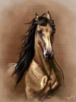 Golden Brown by HocusPlotus