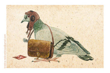 Pigeon by dolls-garden