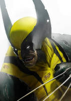 Wolverine by orochi-spawn