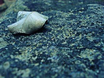 leaf by darthkix