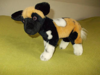 My old wilddog-plushi by ROCKDINE