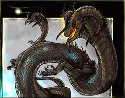 Drorm dragons colored by Anarchpeace