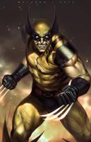 Wolverine by alex-malveda