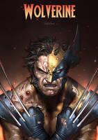 Wolverine 2 by alex-malveda
