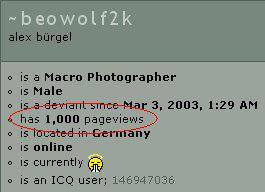 1000 by beowolf2k