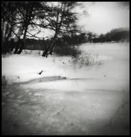 winter by owl