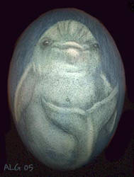 Dolphin Egg by Rebmakash