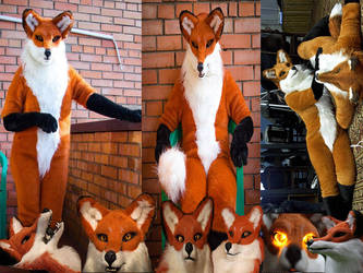 Fox  sale: https://www.furbuy.com/auctions/1082147 by yiffFox
