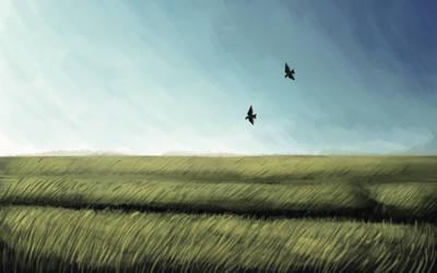 wheat field by Chalybis