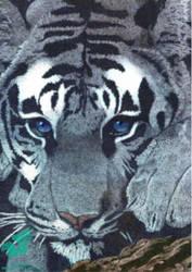 Blue Eyes by Tansatheon