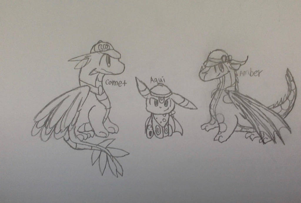 Pokemons and dragons CE and gifts! by CloudtheDragonet
