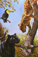 Jaguars and toucan by veracauwenberghs