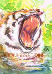 ATC- Yawn by ihazart