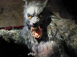 werewolf by elizey