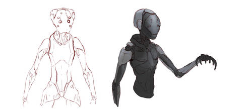 stricker concepts by taibu