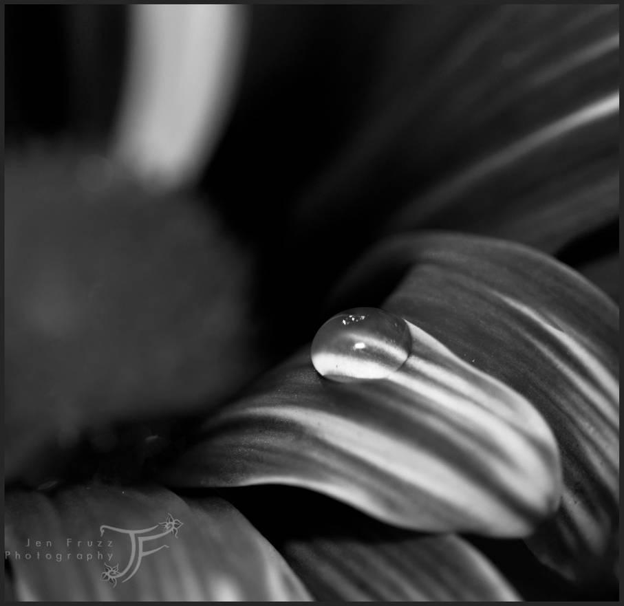 Chrome Drop by JenFruzz
