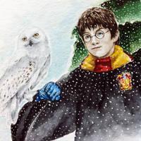 Harry Potter by LiubovKorotkova
