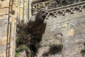 Gargoyle - Cathedral of Bayeux (3) by UdoChristmann