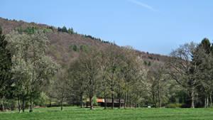 Rural landscape - North Hessen by UdoChristmann