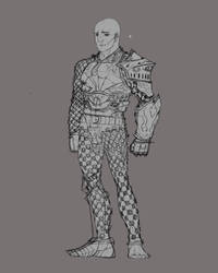 Armour Practice ( work in progress ) by mikrd
