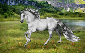 Grulla mountain horse by SwoopDeBlue