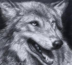 Obedjiwan Wolf by SuliannH