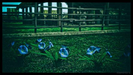 Viking Village Flowers by Vaskania