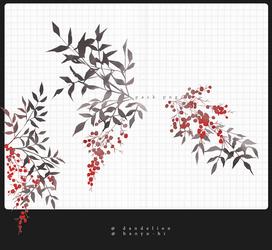 Pack Berries 4 Png by Hanyu-Hi