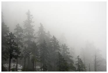 Misty Mountain Hop by kilgore-trout