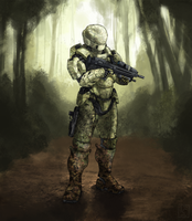 Commission: S-G217 Camouflaged by The-Chronothaur