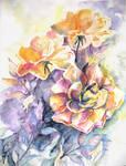 Roses by maroe