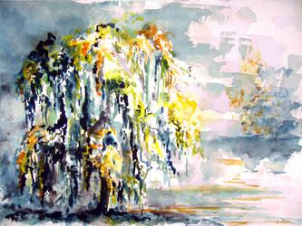 Salix babylonica by maroe